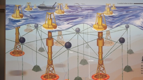 Wave energy Buoys.  Graphic: Hatfield Marine Science Center